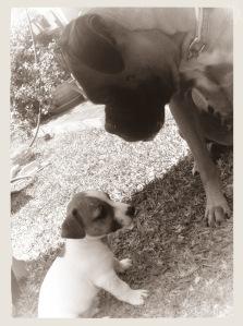 Kika och Etos första möte