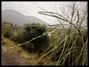 Rainy day 2 April 2014