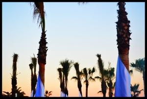 Nikkis Beach 9