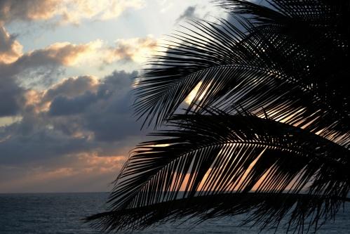 solnedgang-7